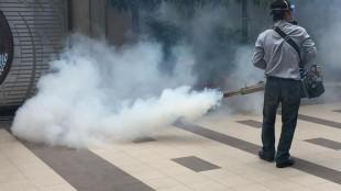 Buhar / Gaz İlaçlama Yöntemi